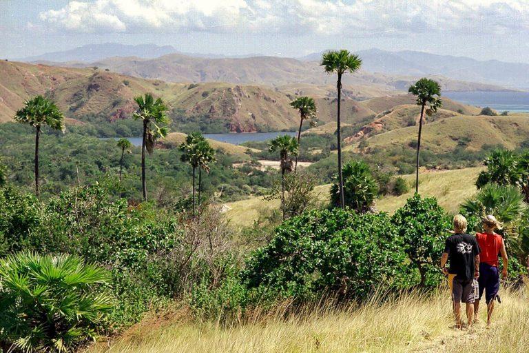 Explore Flores and Komodo Trails – 5 Days-05
