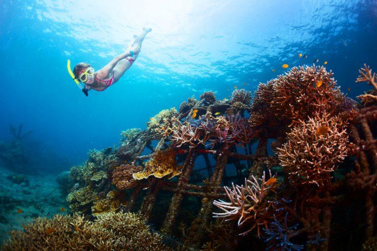 Labuan Bajo Komodo Bali Phinisi Cruise – 7 Days-03