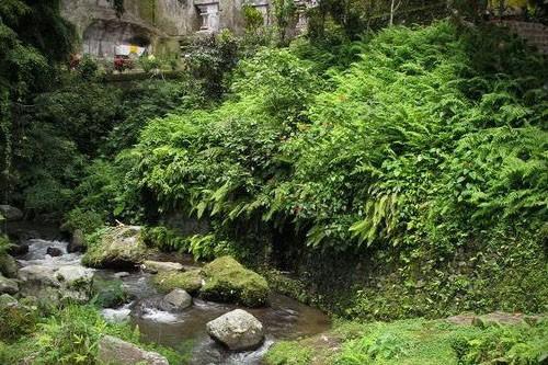 Tampak Siring Village & Gunung Kawi Trek – 3 Hours-14