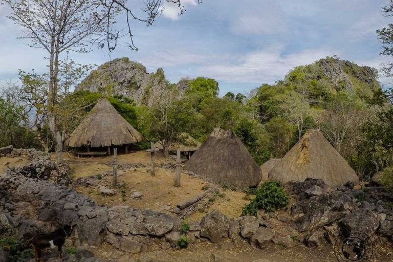 West Timor and Boti Traditional Village Tour – 4 Days-03