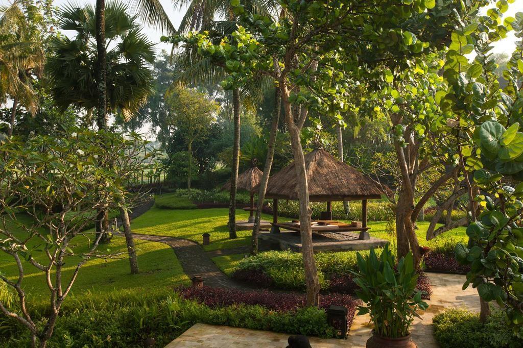 hyatt-yogya-garden