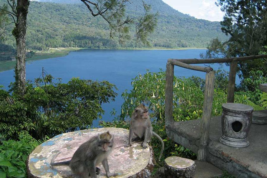 Bali Twin Lakes Trekking-02
