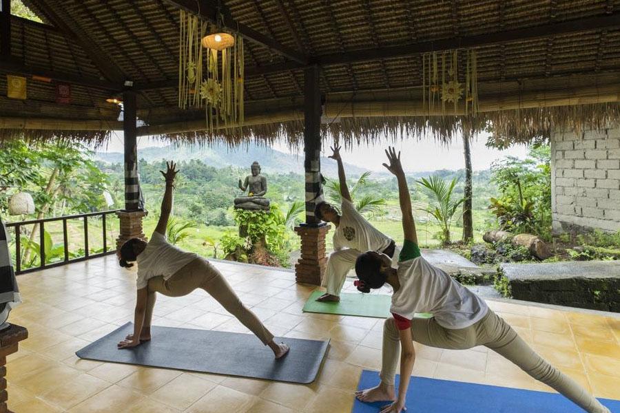 Bali Wellness Holistic Tour-03