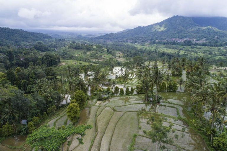 Bali Wellness Holistic Tour-04