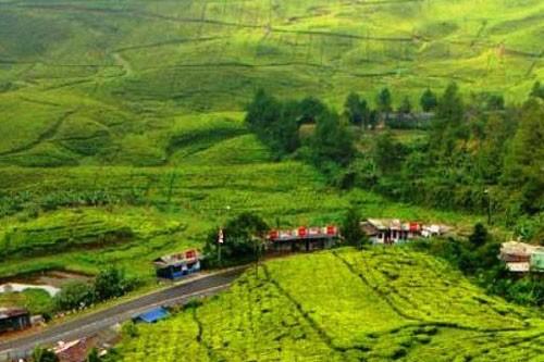 Best Java Bali Overland – 16 Days-03