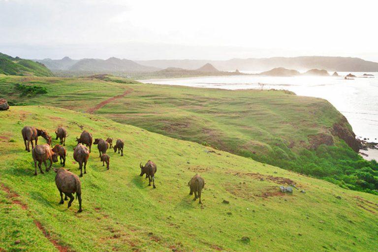 Discover Lombok Sasak Island – 7 Days-03