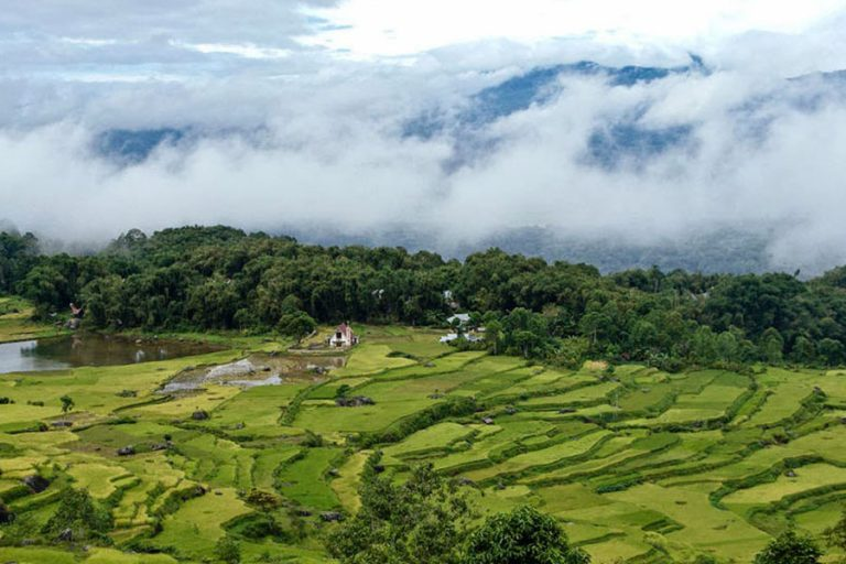 Discover Toraja Highland and Mamasa – 7 Days-01