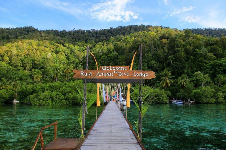 Explore Raja Ampat Islands Marine Life – 8 Days-01