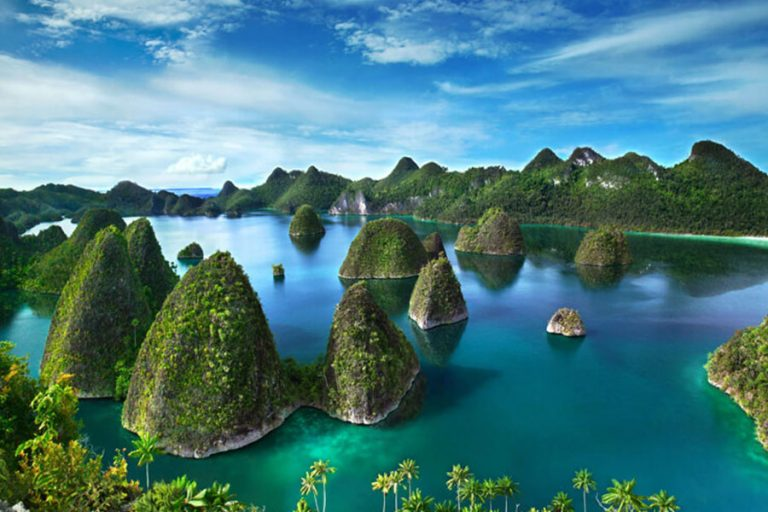 Explore Raja Ampat Islands Marine Life – 8 Days-02
