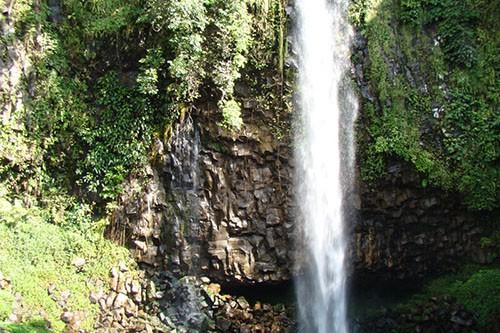 Kerinci Seblat National Park Adventure – 7 Days-02