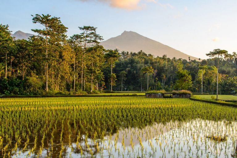 Lombok Gili Island Explore – 7 Days-02