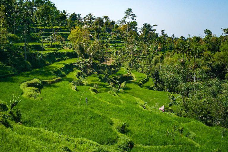 Lombok Gili Island Explore – 7 Days-05