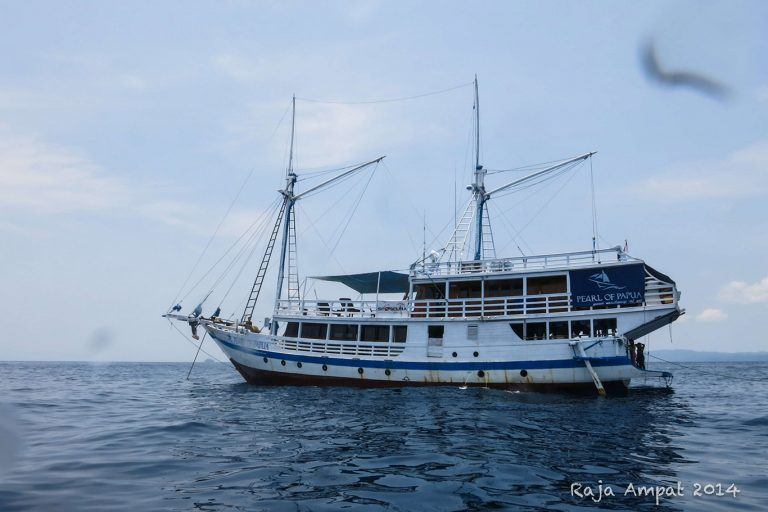 Raja Ampat Liveaboard Charter by Pearl of Papua-02