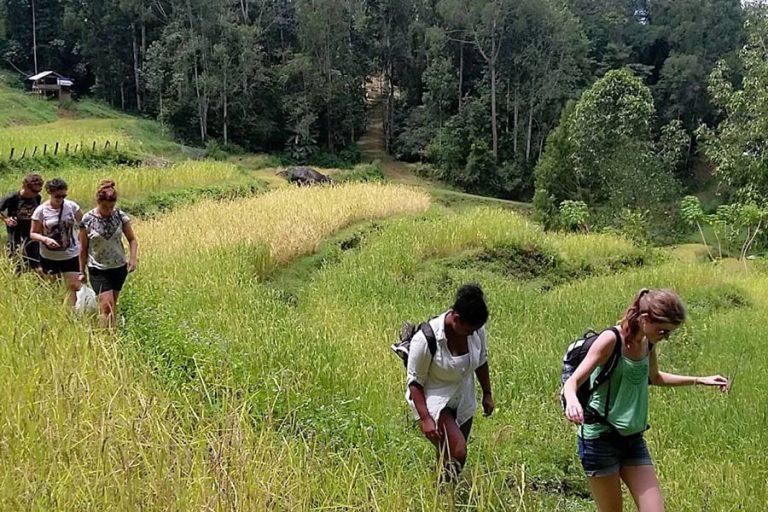 South Sulawesi Round Trip – 8 Days-04
