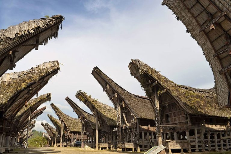 South Sulawesi Round Trip – 8 Days-05