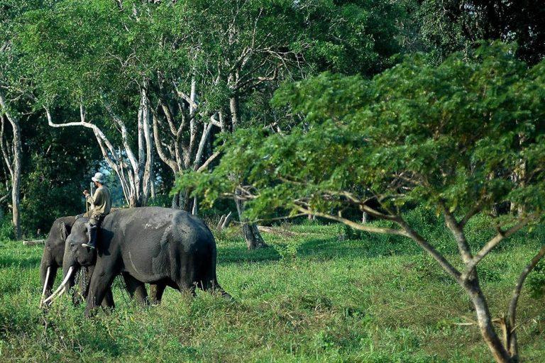 South Sumatra Bengkulu Lampung Overland – 13 Days-06