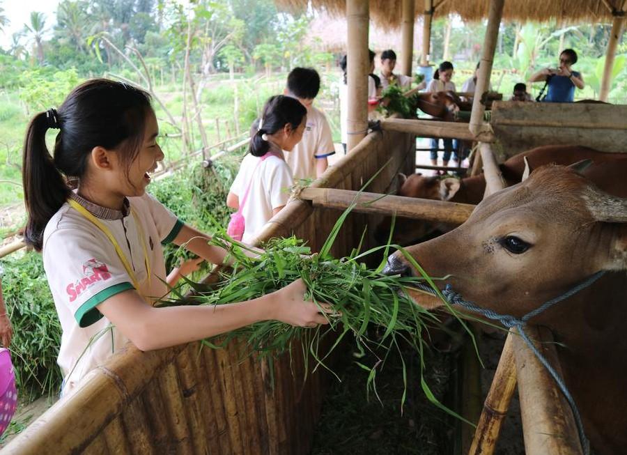 Visesa Ubud Resort-05