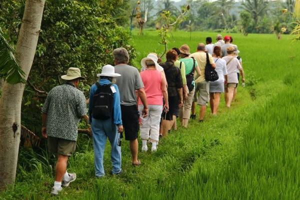 Bali Eco Adventure Trekking & Hot Spring Tour-04