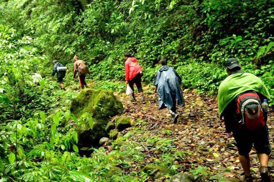 Bali Forest Trekking-02