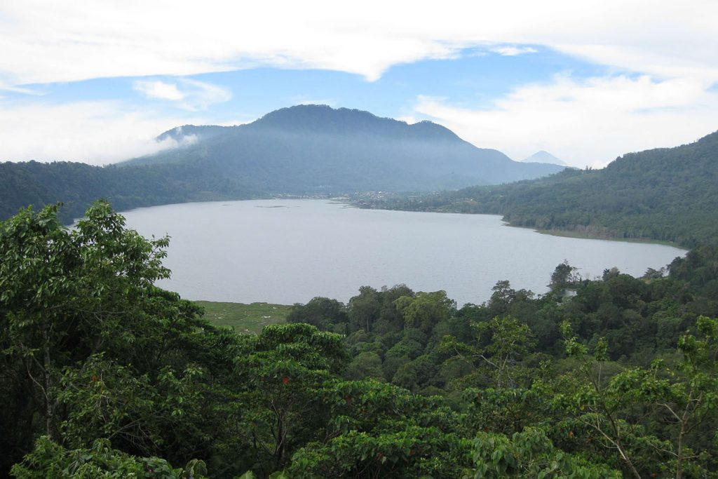 Bali Forest Trekking-04