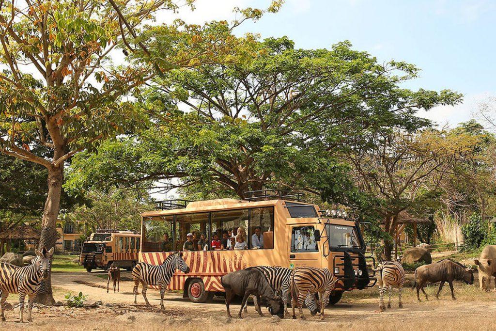 Bali Safari and Marine Park Tour-02