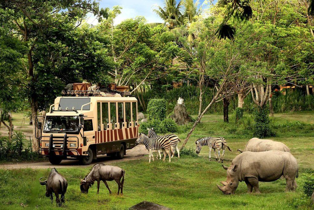 Bali Safari and Marine Park Tour-06